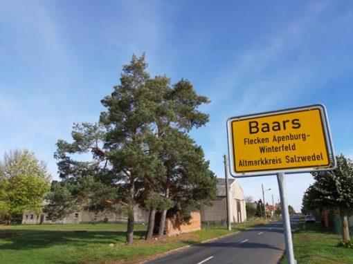 Baars