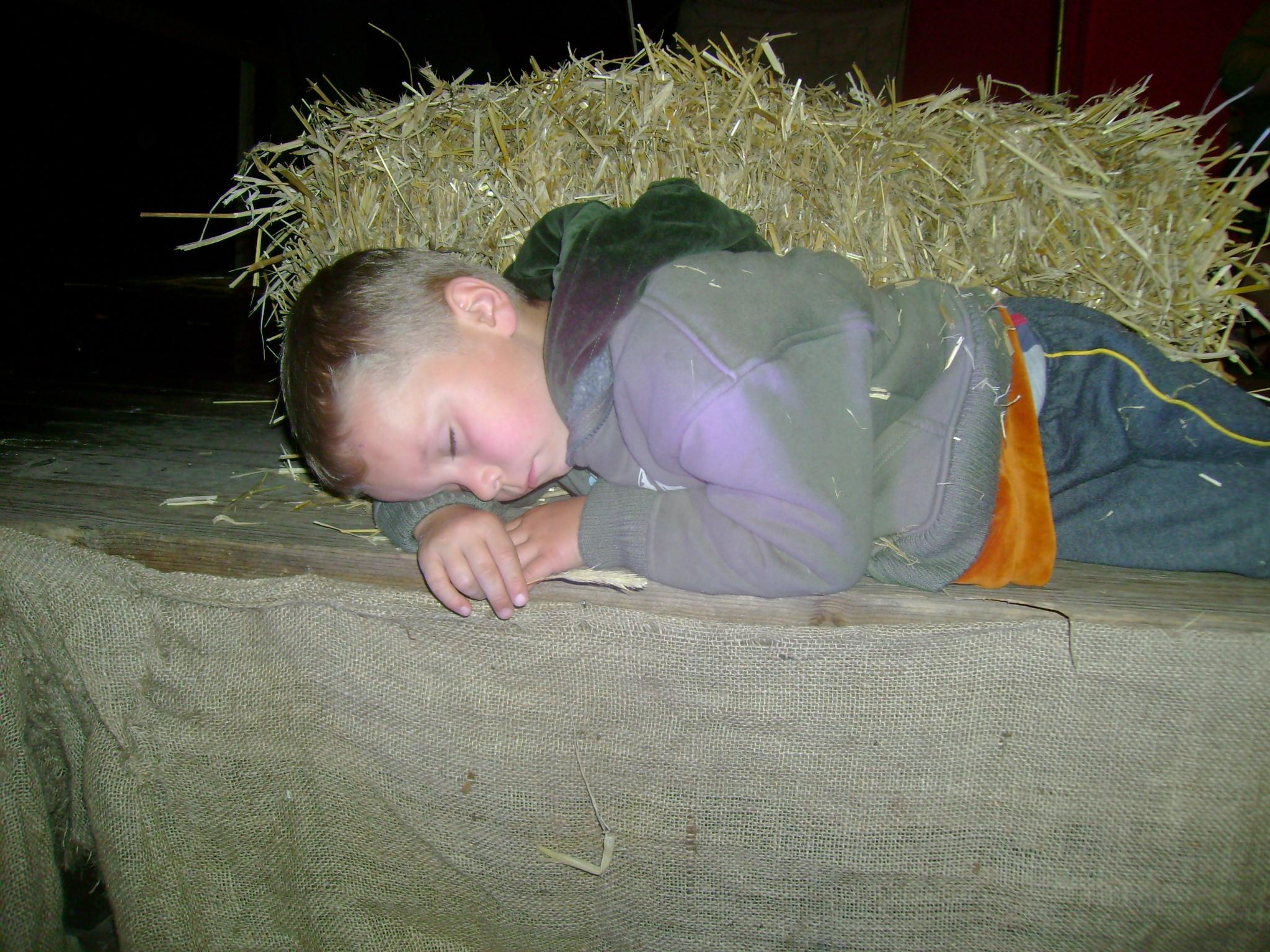 burgfest2008_180